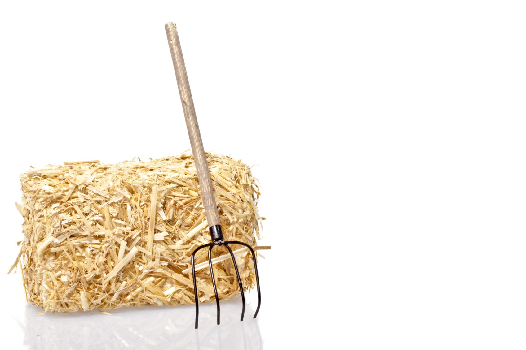 Neem jij regelmatig te veel hooi op je vork?